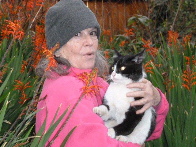anita sands hernandez and her fave cat, Sparkey